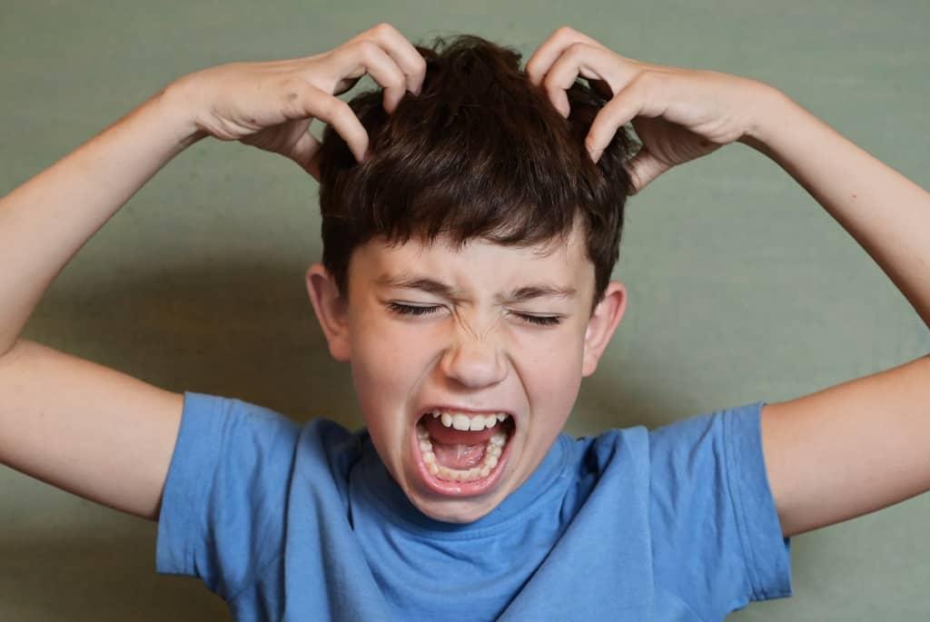 Luseæg er noget rigtig skidt at få i håret - lus er nemlig meget svært at komme af med igen og der skal både luseshampoo og en lusekam til, for at man kommer af med kløen.